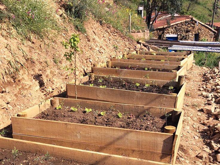 Agro-toerisme: start seizoen