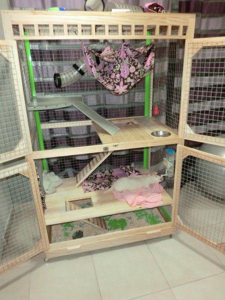 Descubra aquí los distintos modelos de jaulas para hurones y mascotas similares disponibles en nuestro catálogo.