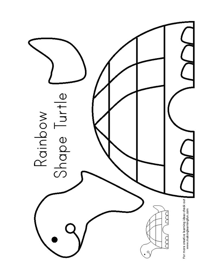 cut and paste coloring pages - 17 best images about turtle theme unit study homeschool on