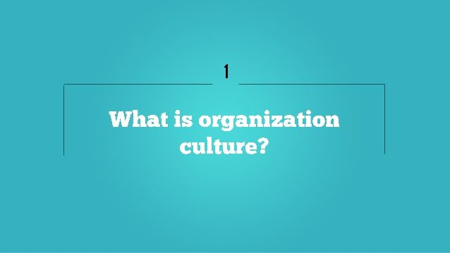 What is organization culture?