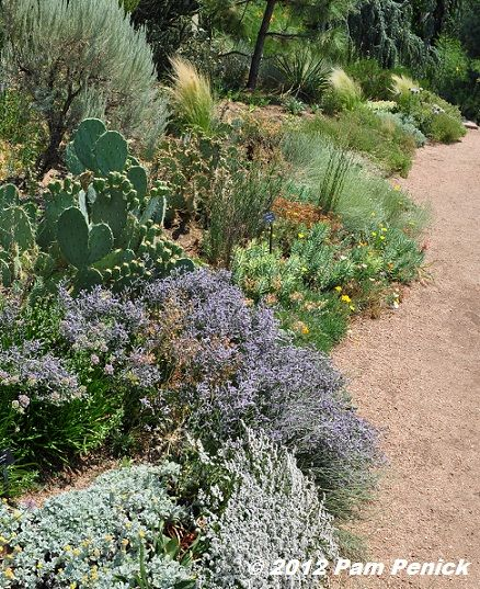 Visit To Denver Botanic Gardens: Water Smart Garden, Wildflower .