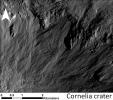 PIA16490: Sinuous Gullies, Close-up