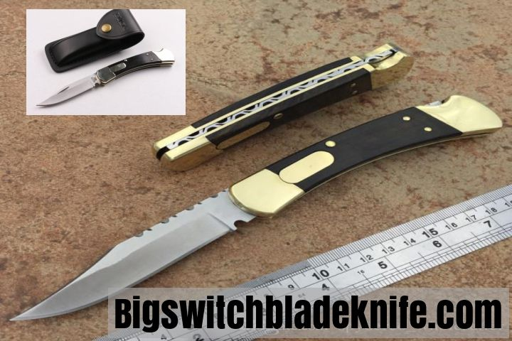 switchblade Buck 110 at  bigswitchbladeknife.com
