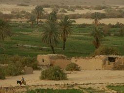 Bahareya Oasis Tours | White Desert Safari | White desert Trips | Egypt Desert Safari