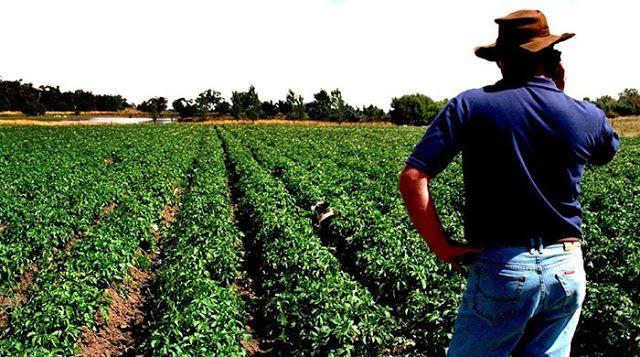 ΓΝΩΜΗ ΚΙΛΚΙΣ ΠΑΙΟΝΙΑΣ: 700 εκατ. ευρώ για αγροτική ανάπτυξη σε τρεις άξον...