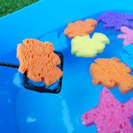 Bobbing for Nemo...free templates for Finding Nemo themed fish, starfish.  And game idea.  Bobbing for nemo sponges.  Also could use the sponges for an activity station sponge painting.