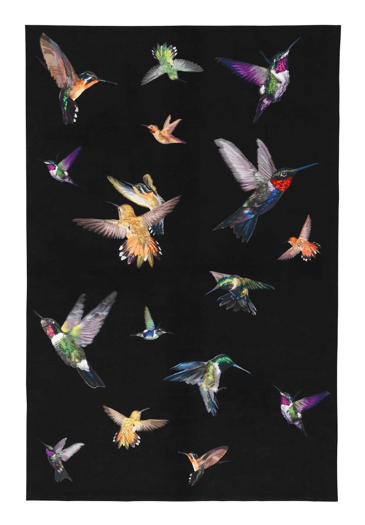Hummingbird Alexander McQueen Aubusson tapestry rugs Cashmere, Pashmina, Silk £2,300 per m2