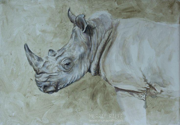 white rhino, square-lipped rhinoceros (Ceratotherium simum)  painting, acrylic on canvas by murray ralfe  www.murrayralfe.com
