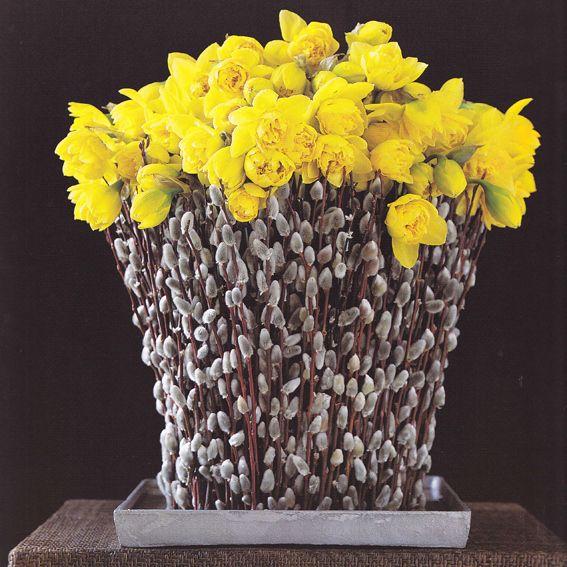 Daffodils flower arrangement