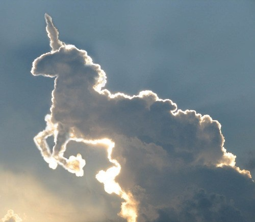 unicorns are real. and puffy. @michele janezic this is for you:)