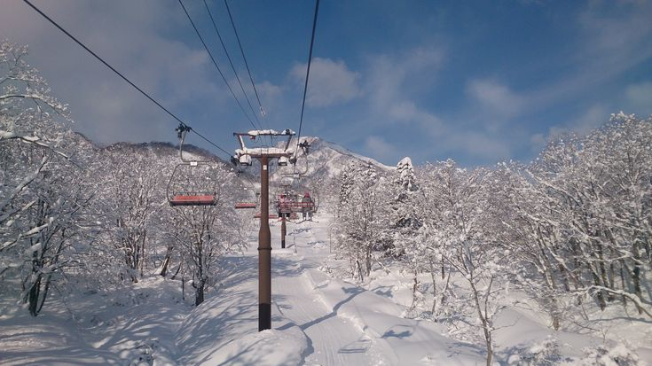 The Ultimate Myoko Kogen Ski Resort Guide @ Destination Myoko Kogen. Myoko ski resort information, accommodation, hotels, webcams, reviews, snow report, +