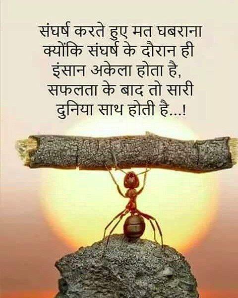 Never be afraid of Struggle. Hindi hindiquotes suvichar