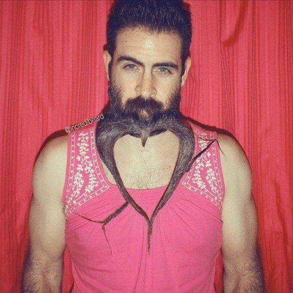 Best Hahaha Images On Pinterest Blog Favorite Things And - Incredibeard glorious beard