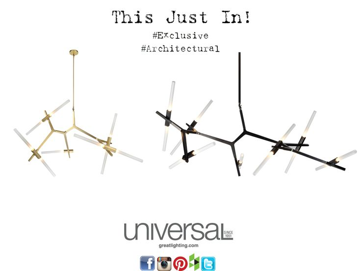 This Just in! We are so excited about these new pieces that just arrived and are exclusively sold right here! These truly unique pieces are architectural and organic. They are available in black, brushed brass and matte chrome, in three different sizes, and allow for your personal touch! The possibilities with these really are endless. You HAVE to come into the showroom to see them for yourself! They're hanging right over the front desk.