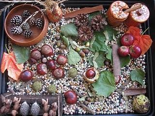 Autumn sensory bin from Pre-school Play. Looks fantastic! #autumn #sensory bin
