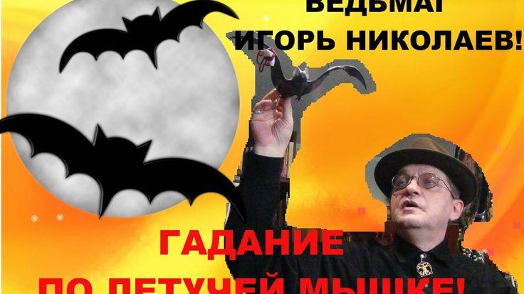 Гадание по летучей мыши! Гадание на Святки!