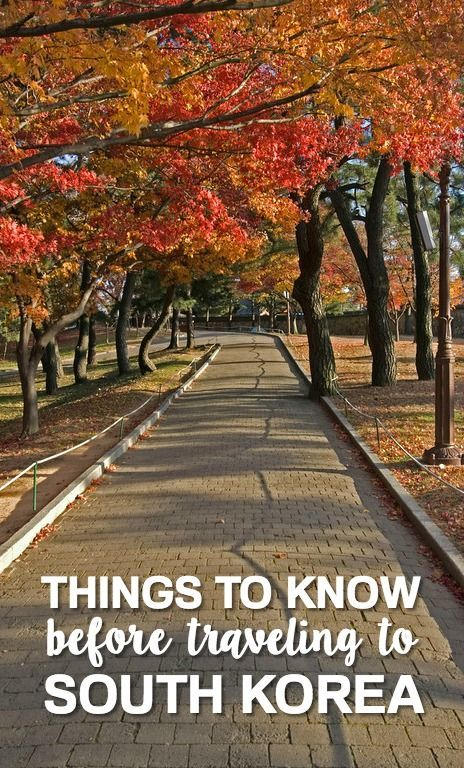 South Korea is a sovereign state in East Asia that comprises the southern part of the Korean peninsula. Travel to South Korea wherein you can visit beautiful and well preserved shrines from earlier eras.