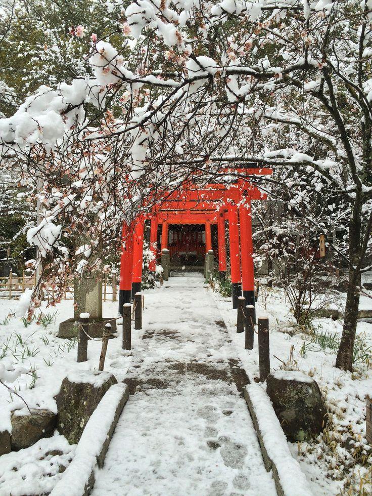 307 best images about toriis on pinterest japan japan. Black Bedroom Furniture Sets. Home Design Ideas