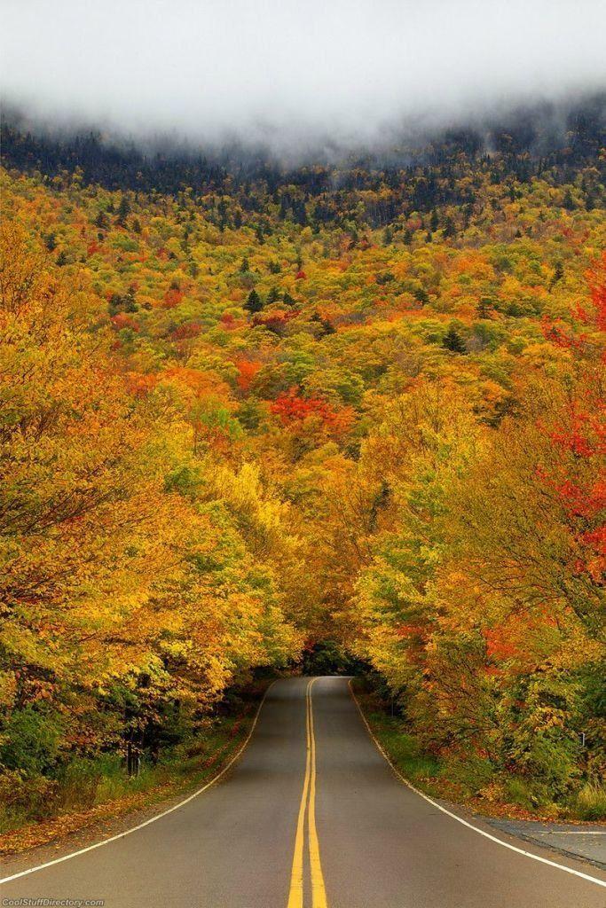Tunnel-automne-Etats-Unis