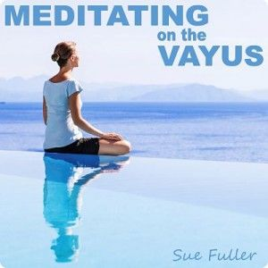 Meditating on the Vayus MP3 Download by Sue Fuller