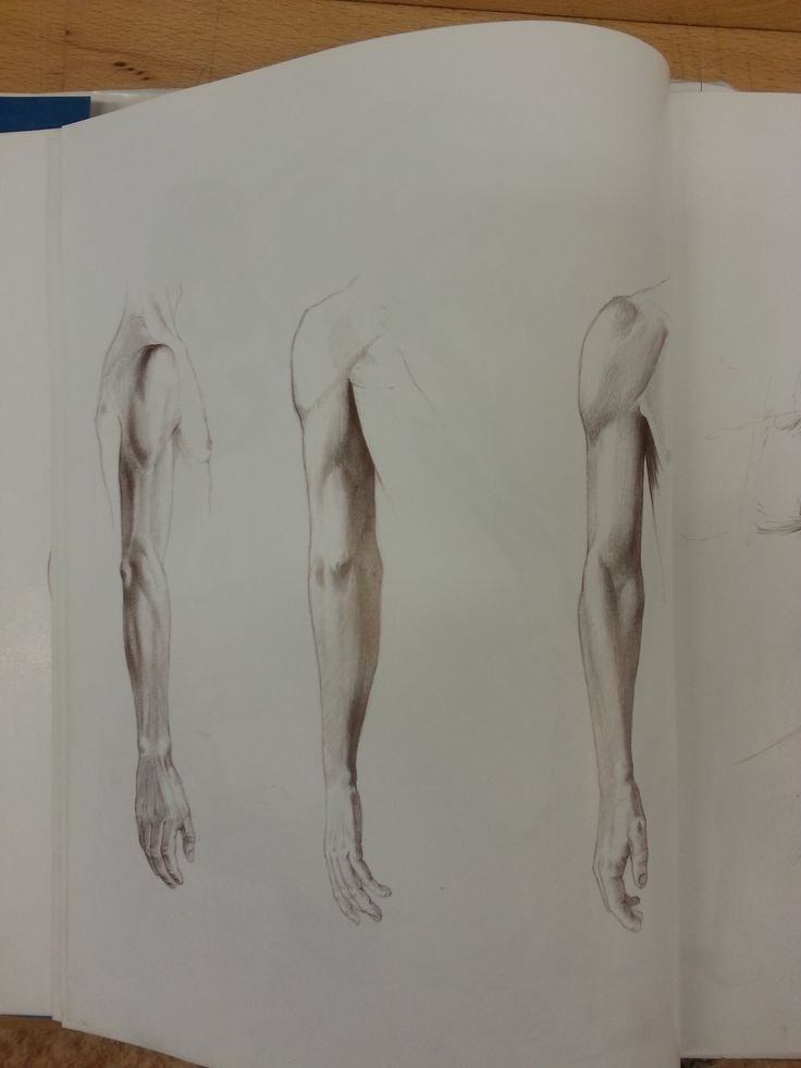 rameno