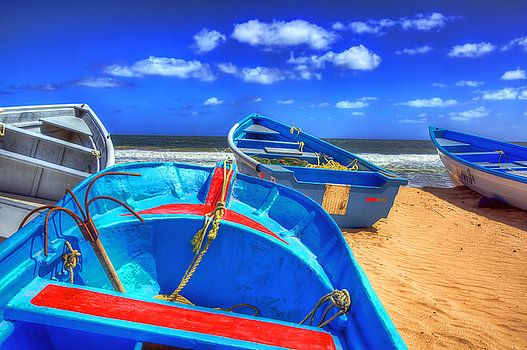 Blue Boats. Fishing boats in Mayaro fishing village Trinidad in the Caribbean. The boats are pulled up in the sand after a day of fishing,anchored safely facing the blue waters of the caribbean sea in the evening sunshine of blue skies and puffy white clouds
