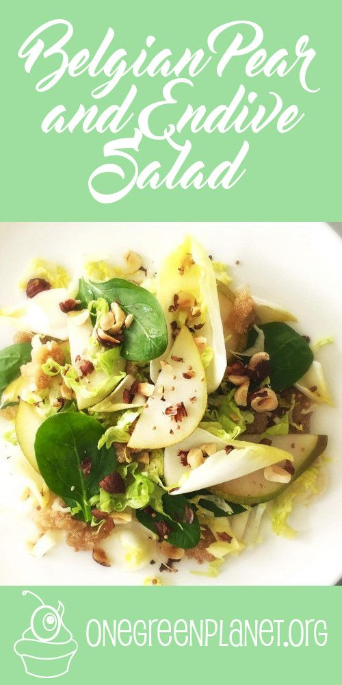 Belgian Pear and Endive Salad [Vegan] @julieslifestyle http://www.onegreenplanet.org/vegan-recipe/belgian-pear-and-endive-salad/  #eatfortheplanet #vegan #veganshare #vegansofig #plantbased #plantpower #healthy #eatclean #yum #foodporn #food #veganfoodporn #veganfood #vegancooking #veggieinspired #plantbasedcooking #plantbased #veg #eatgreen #eatclean #veganfoodshare #meatfree #meatless #dairyfree #plantpower #whatveganseat