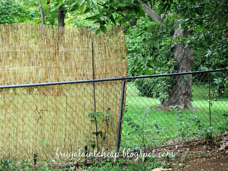Reed Fence Turns Chain-Link into a Privacy Fence