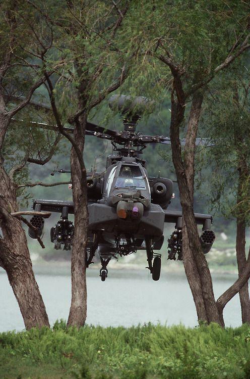 AH-64D Apache hiding behind trees