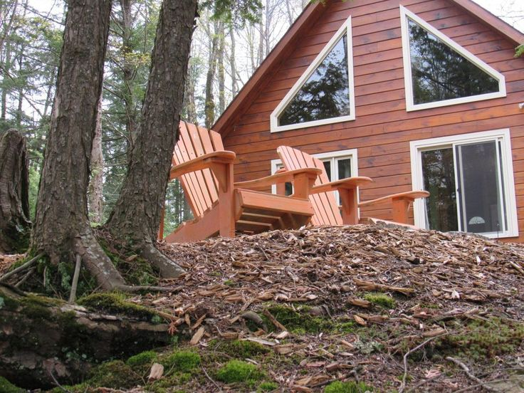 4 Season Log Cabin Cottage with year round access nestled on the shore of Beautiful Chandos Lake in North Kawartha.