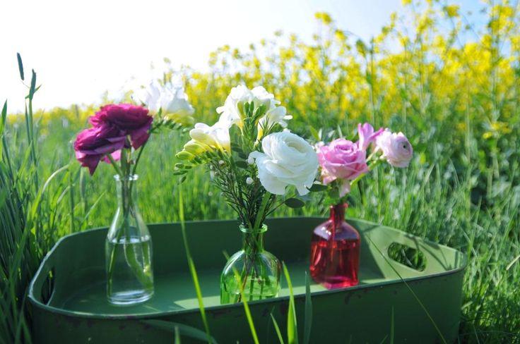 """""""Vasen-Set """"Osterglück"""" mit Schnittblumen"""" #vasen #ostern #easter #spring #fruehling #blumen #deko #glas #bunt #freude #schenken #geschenk #pink #garden #fresien #ranunkel #rose // Lieferbar bis zum 05.04.2015"""