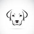 Vector image of an dog labrador Royalty Free Stock Photo