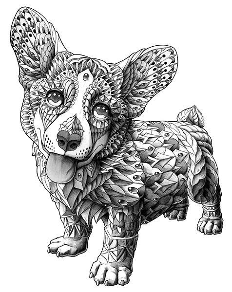 More Adult Coloring Dogs 28510339 Corgi Pages