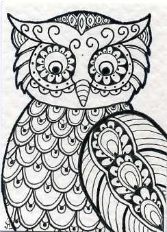 owl doodle not a printi didnt make this simple peacock doodles owl coloring sheet