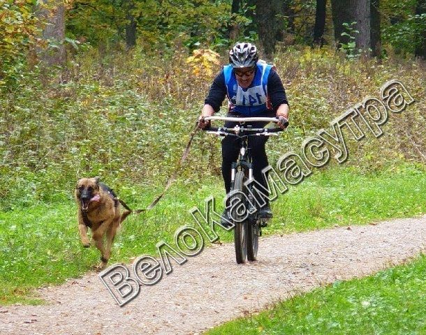 Сайт о велосипедах. Новости и аналитика велосипедов. Технические характеристики велосипедов. Ремонт велосипедов. Велосипедные аксессуары. Тюнинг велосипедов. Аэрография на велосипеде. Велоспорт. Приемы езды на велосипедах. Интересные факты о велосипедах. Уход, чистка и смазка велосипеда и много других сфер, связанных с велосипедом.
