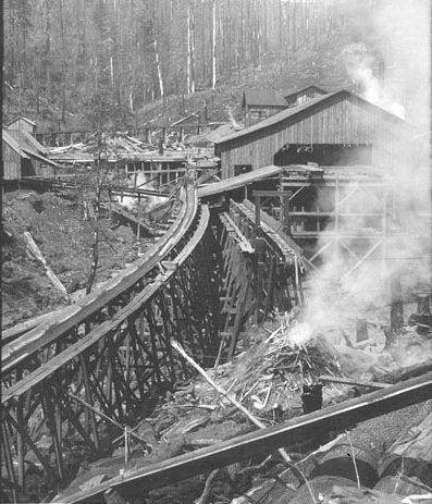 Lumberjack Bottes Pour Fille El Ordre Véritable Jeu Wiki Vue