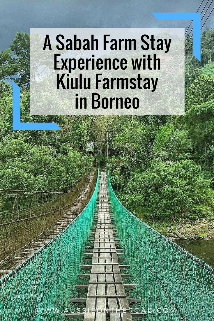A Sabah Farm Stay Experience with Kiulu Farm Stay - Aussie on the Road