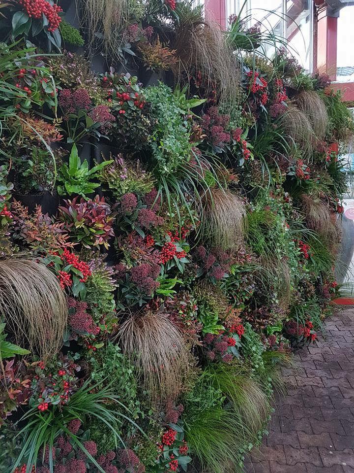 M s de 25 ideas incre bles sobre jardines verticales en for Ideas para jardines verticales