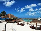 Cozumel Excursions & Cruise Shore Excursions � Save 75%
