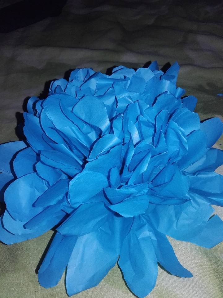 Large Tissue paper fake flowers.