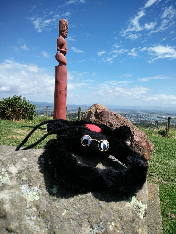 Spinner our mascot hanging out in New Zealand