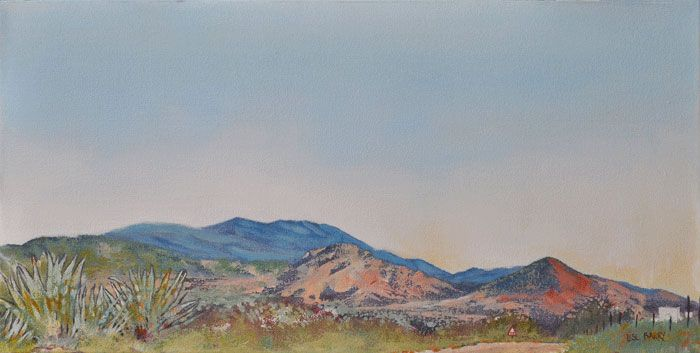 Back Road Journeys  (oil on canvas, 600X300mmX45mm)  by Lisl Barry   www.lislbarry.co.za   Little Karoo landscape