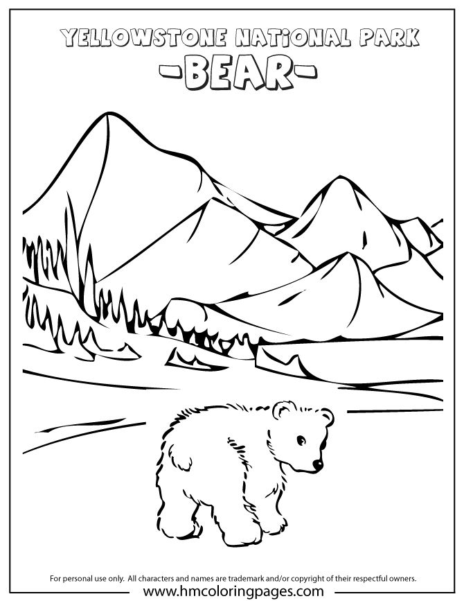 cute baby bear at yellowstone park coloring page yellowstone vacation pinterest bears. Black Bedroom Furniture Sets. Home Design Ideas