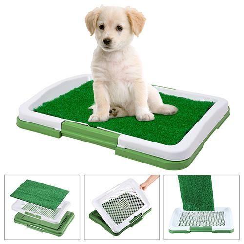 Indoor Puppy Potty Trainer-GoAmiroo Store