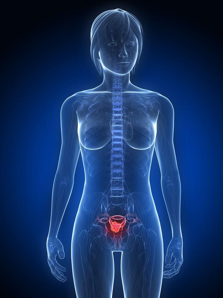SEGUROS PRIZA te pregunta ¿QUÉ SON LOS TUMORES GINECOLÓGICOS? Los ovarios son dos y están en la pelvis, uno a cada lado del útero. Tienen la forma y tamaño de una almendra, y producen tanto óvulos como hormonas femeninas (estrógenos y progesterona) que se encargan de dar forma y rasgos femeninos al cuerpo y de regular la menstruación y el embarazo entre otras cosas.