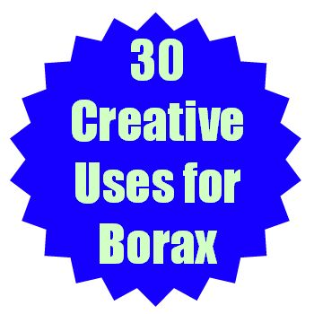 1000 Images About Borax Uses On Pinterest Roaches Ants