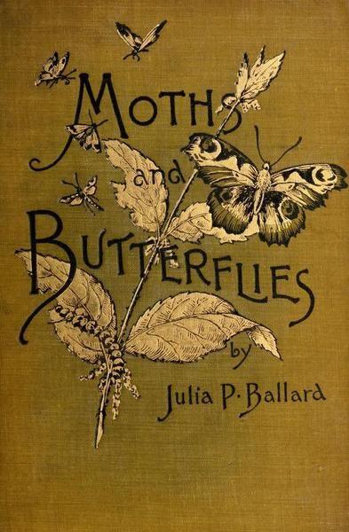 Moths And Butterflies by Julia P. Ballard (1) From: A Queiter Storm, please visit