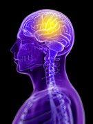 5 choses à savoir sur la maladie de Charcot | Medisite