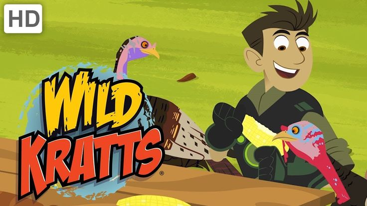 Wild Kratts - Happy Turkey Day (Full Episode)