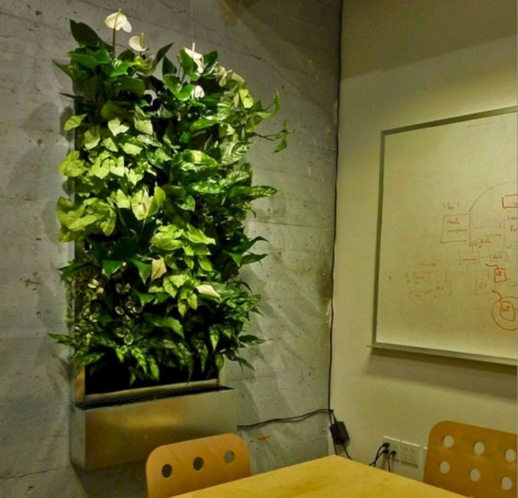 The 25+ Best Indoor Vertical Gardens Ideas On Pinterest | Outdoor Wall  Planters, Wall Garden Indoor And Indoor Living Wall